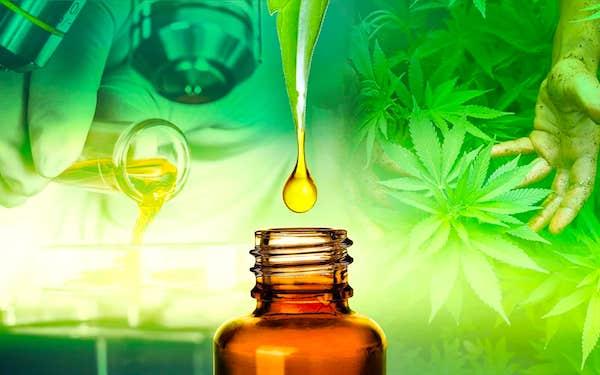 organic cbd oil in arizona